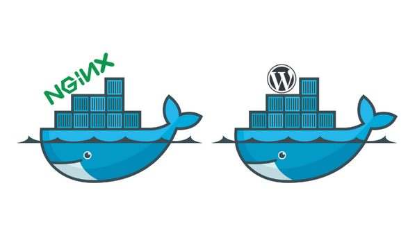 Set up docker Wordpress behind docker NGINX with SSL